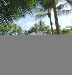 Coral Costa Caribe Resort & Spa
